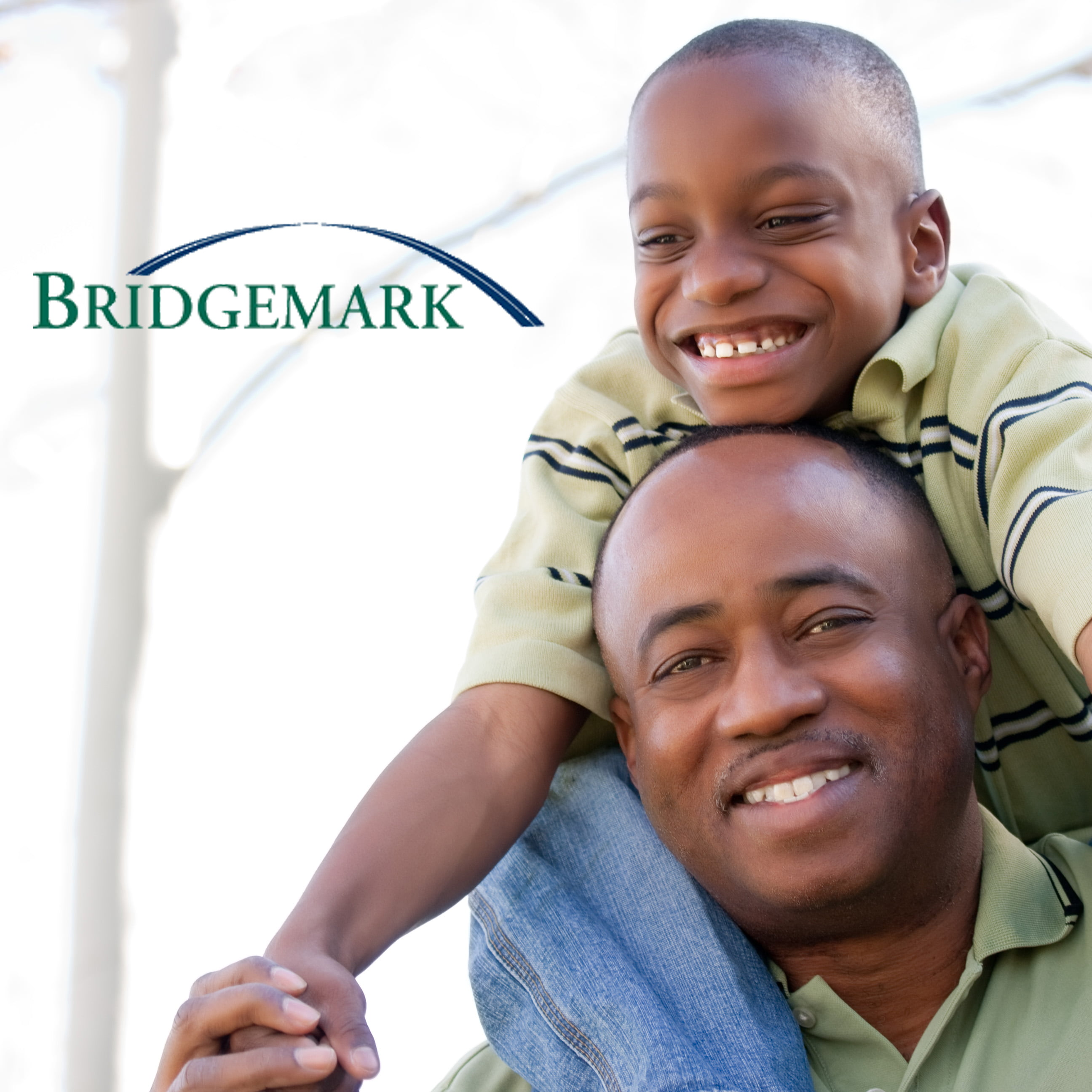 Bridgemark Addiction Recovery Services Logo