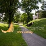Rosecrance - Harrison Ave, IL