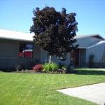 Rimrock Trails Adolescent Treatment Services