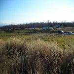 Nugen's Ranch