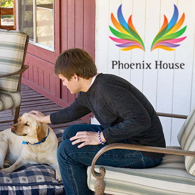 Phoenix House - California Logo