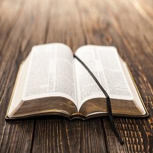 bible 300x300
