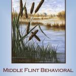 Middle Flint Behavioral Healthcare