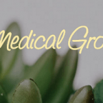 Insight Medical Group LLC