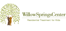 Willow Springs Center