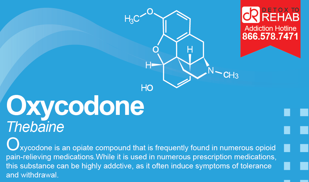 Oxycodone Infograph