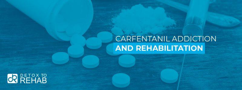 Carfentanil Addiction Rehabilitation Header