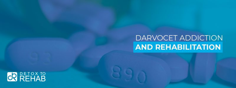 Darvocet Addiction Rehabilitation Header