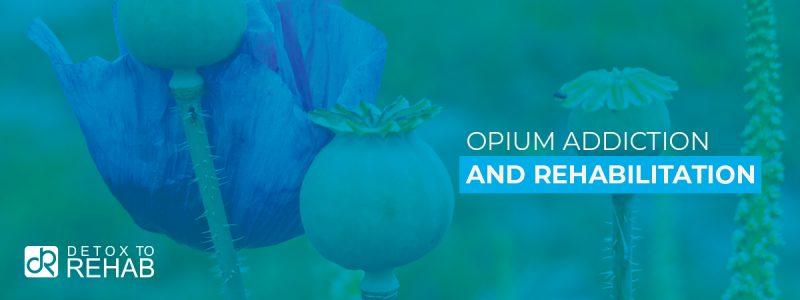 Opium Addiction Rehab Header