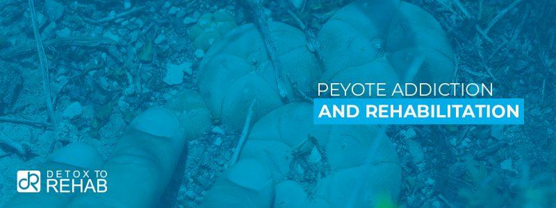 Peyote Addiction Rehab Header