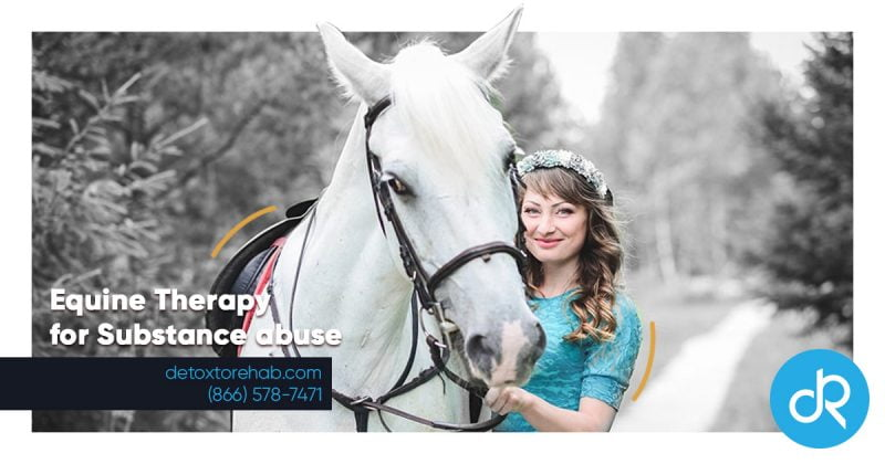 Equine Therapy Header Image