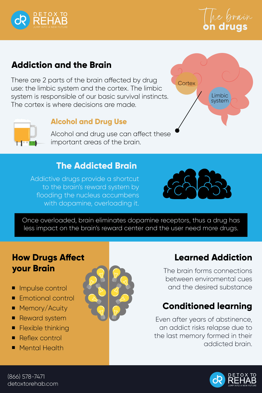 The Addicted Brain infographic