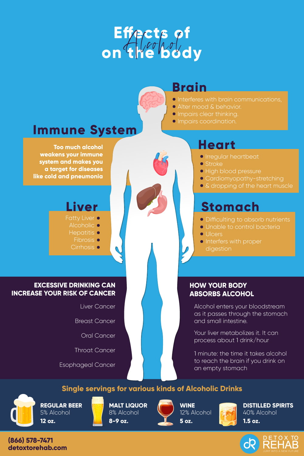 effects of the alcohol on the body infographic